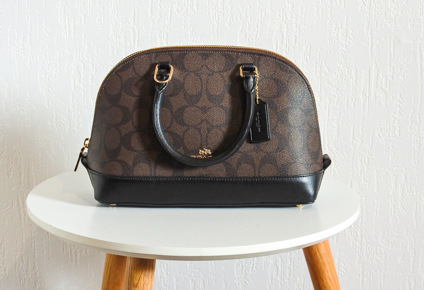 petit sac de luxe pas cher